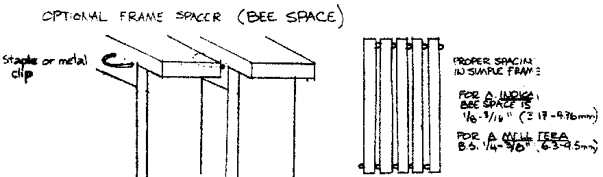 optional frame spacer (bee space)
