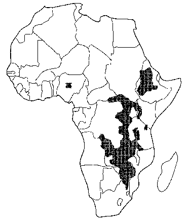 Lost Crops Of Africa Volume I