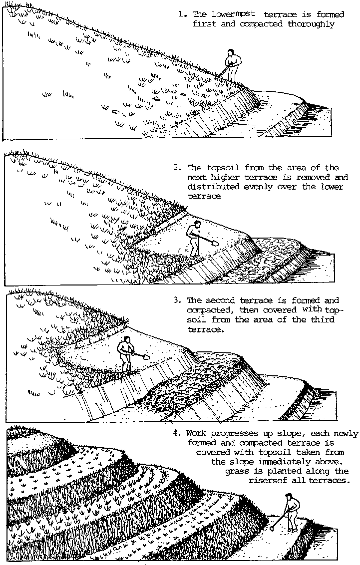 Soil Conservation Techniques For Hillside Farms Traditional