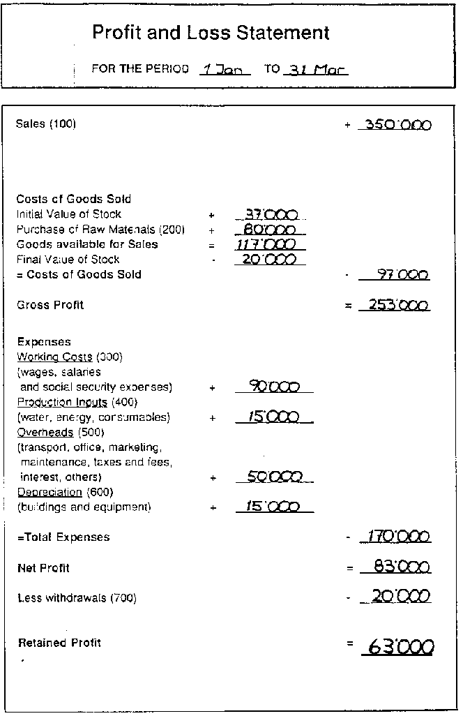Profit And Loss Example  Profit Loss Statement Example