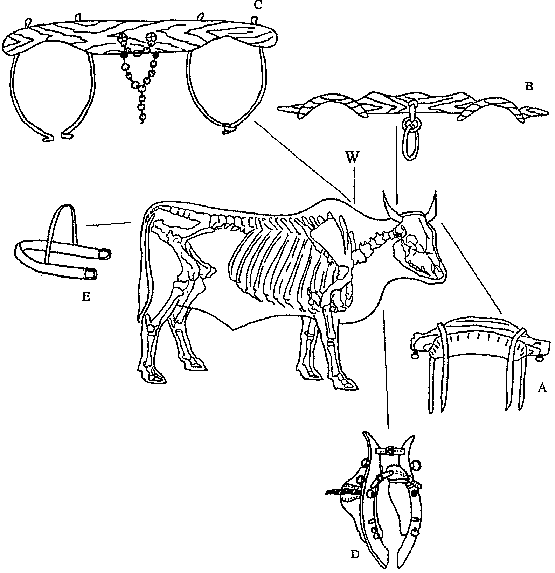 Harnessing and Implements for Animal Traction: Map of Africa