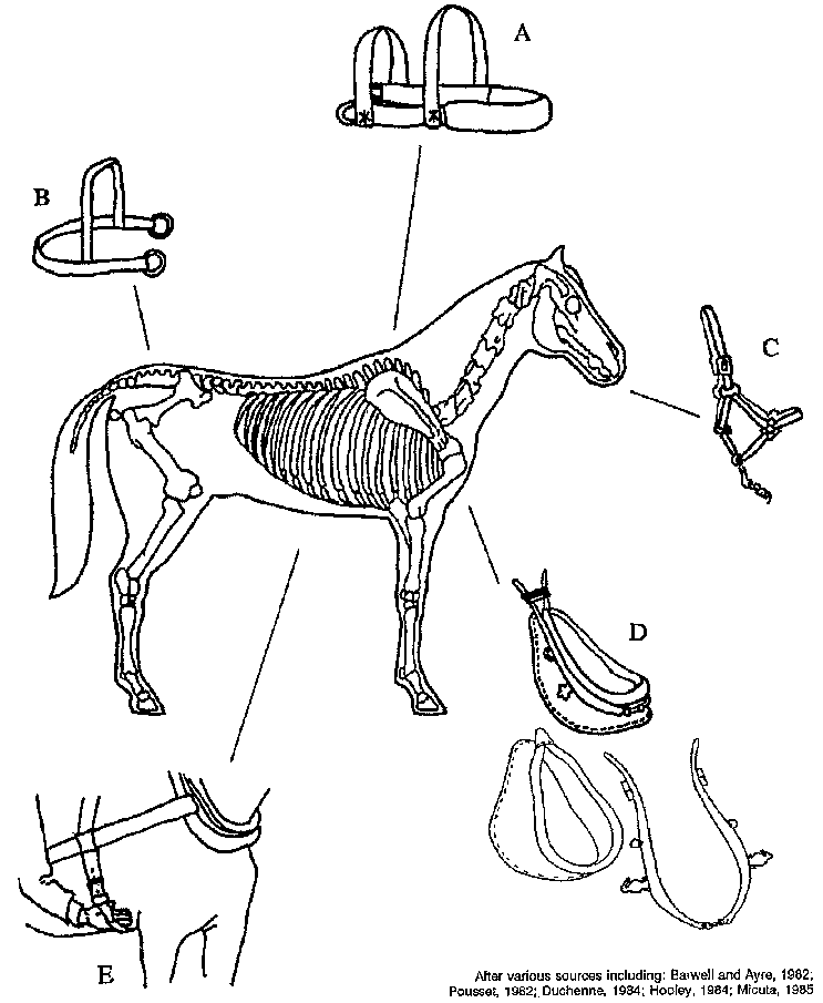 Harnessing And Implements For Animal Traction Map Of Africa