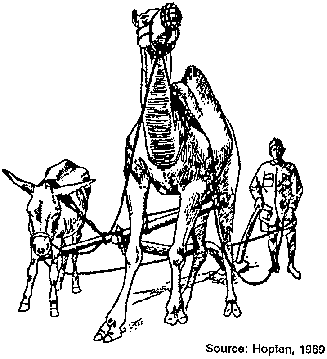 harnessing and implements for animal traction 1 Ton Hog fig 4 12 mixed camel and donkey harnessed with belly yoke this seemingly inefficient and un fordable harness is still used on a small scale